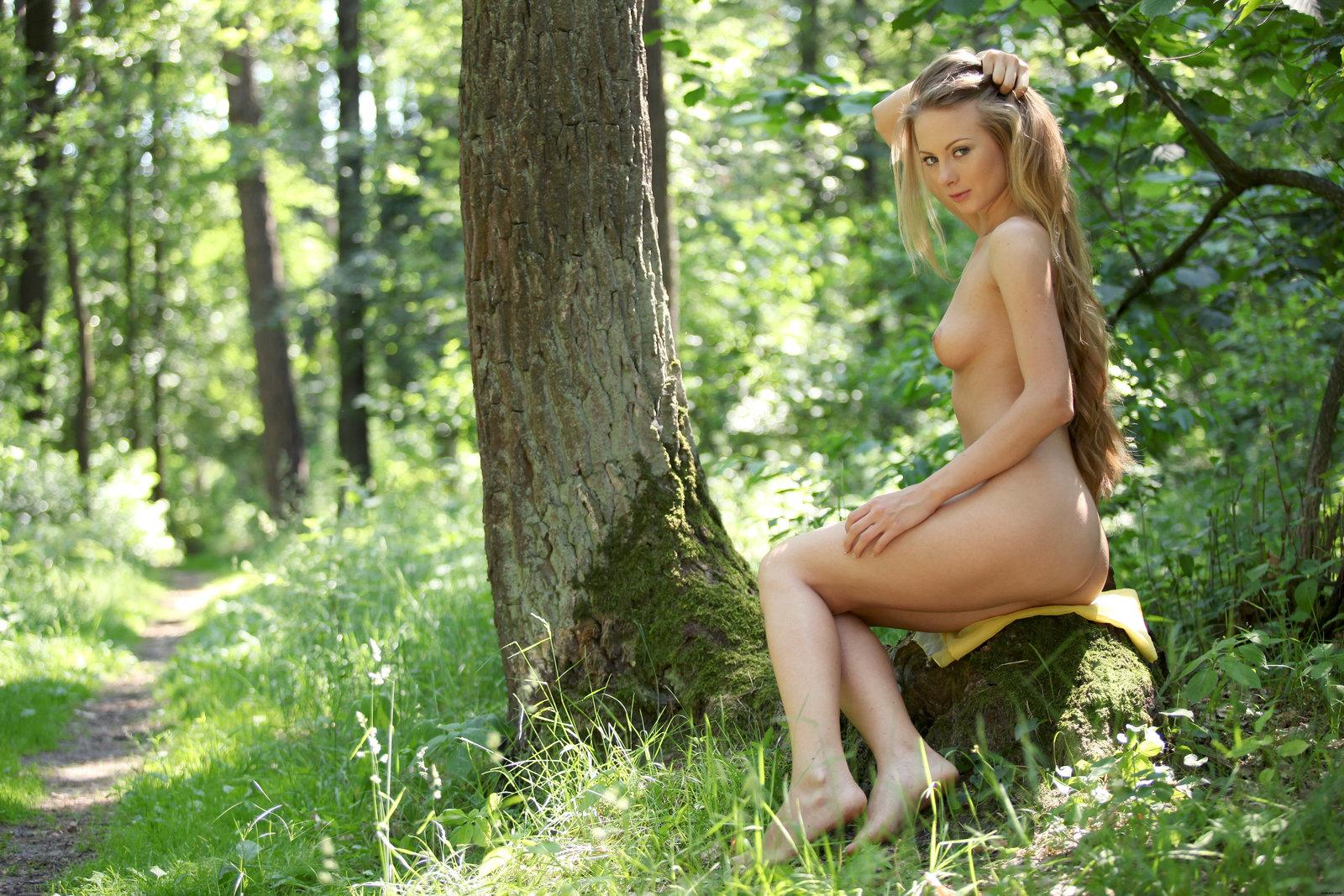 Zdjęcie porno - 038 - Blond suczka w lesie