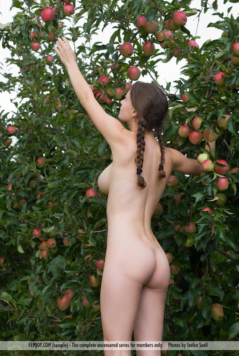 Zdjęcie porno - 0411 - Naga dziunia w ogrodzie